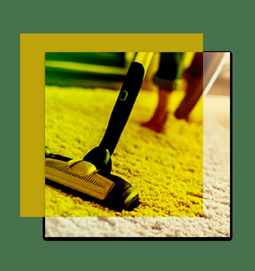 Professional Carpet Cleaning Nicholls