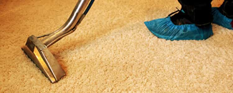 Best End of Lease Carpet Cleaning Nicholls