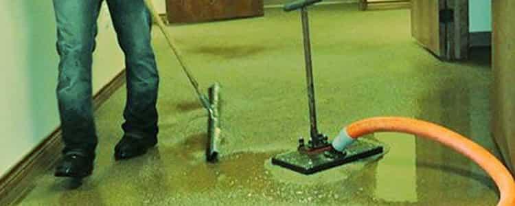 Water Extraction Nicholls
